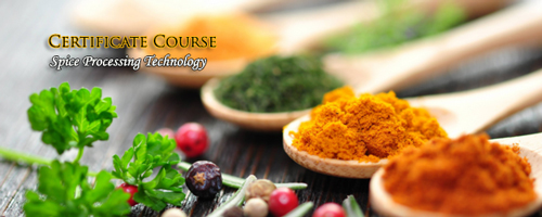 Certificate Course in Spice Processing Technology